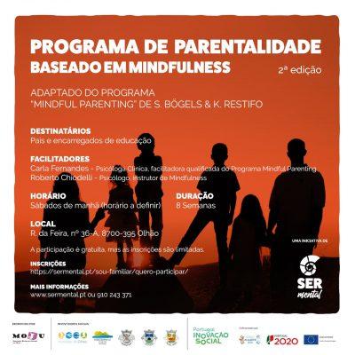 cartaz_programa_parentalidade_website-01-min